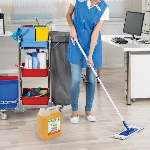 Средство для мытья пола, стен и поверхностей, c дезинфекцией, биоразлагаемое, 5 л, LAIMA EXPERT, 607761